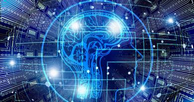 Investigadores em Portugal recriam zonas do cérebro usando células para produzir matriz