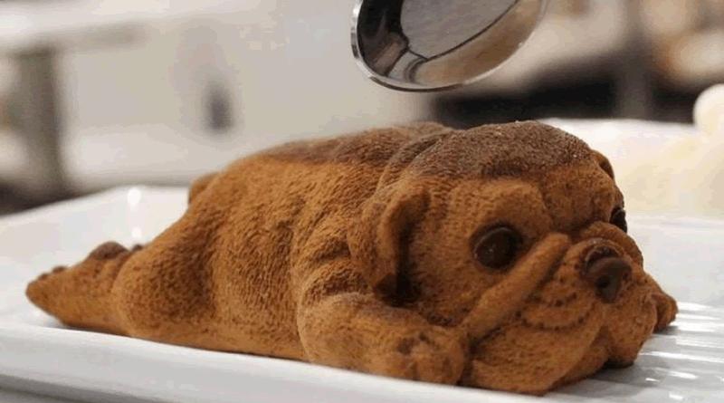 Chegaram a Portugal os estranhos cães feitos de mousse