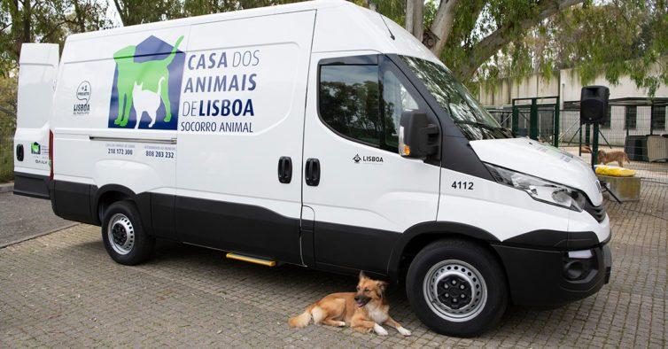 Lisboa já tem uma ambulância equipada para socorrer animais
