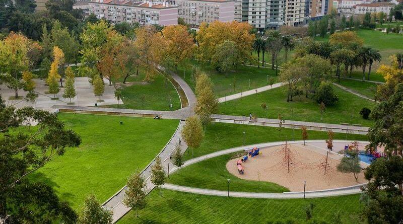 Lisboa vai plantar 20 mil árvores e usar água reciclada em toda a cidade