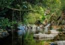 Cinfães: este baloiço sobre a água é a estrela do verão