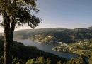 Presidente da Turismo Porto e Norte crê que 2023 voltará a ter 11 milhões de dormidas